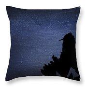 Cactus Wren In The Night Throw Pillow