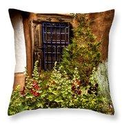 Cafe Window Throw Pillow