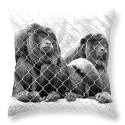 Caged And Captive Throw Pillow