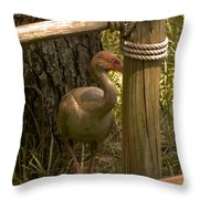 Cagney Throw Pillow