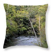 Cahaba River Shadows Throw Pillow