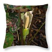 Caladium Flower 2 Throw Pillow