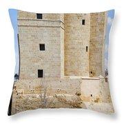 Calahorra Tower In Cordoba Throw Pillow