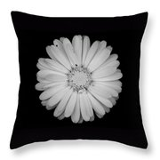 Calendula Flower - Black And White Throw Pillow