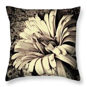 Calendula In Browns Throw Pillow