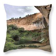 Calf Creek Demon Throw Pillow
