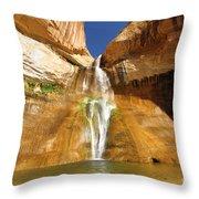 Calf Creek Falls Throw Pillow