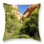 Calf Creek Falls Canyon Throw Pillow