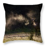 Calf Elk With Steaming Breath At Lost Valley Throw Pillow