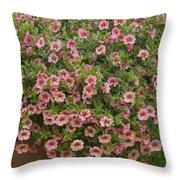 Calibrachoa Calibrachoa Sp Noa Peach Throw Pillow
