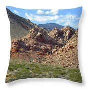 Calico Basin View Throw Pillow