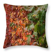 Calico By Nature Throw Pillow