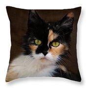 Calico Cat Portrait Throw Pillow