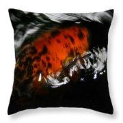Calico Koi Wake Throw Pillow