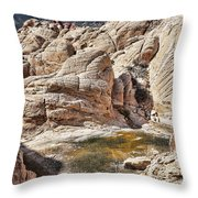 Calico Tanks Throw Pillow by Kelley King