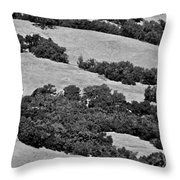California Hillside Oaks Throw Pillow