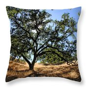 California Oaks Throw Pillow