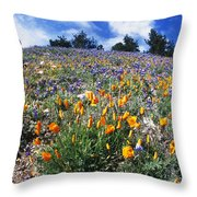 California Poppies And Lupins On A Hill Throw Pillow