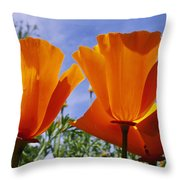 California Poppies Eschscholtzia Throw Pillow
