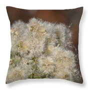 California Snow 2 Throw Pillow