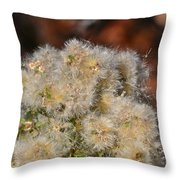 California Snow Throw Pillow