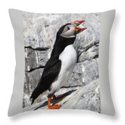 Call Of The Puffin Throw Pillow