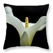 Calla Blossom - Cala Throw Pillow