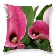 Calla Lilies In Pink Throw Pillow