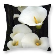 Calla Lilies Throw Pillow