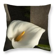 Calla Lily And Fence Throw Pillow