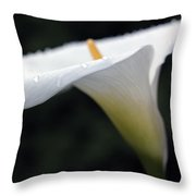 Calla Lily Flower Raindrops Throw Pillow