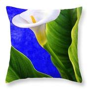 Calla Over Blue Throw Pillow