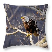 Calling For His Mate Throw Pillow