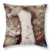 Camarasaurus Femur Covered In Burlap Throw Pillow