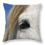Camargue Horse Equus Caballus Eye Throw Pillow
