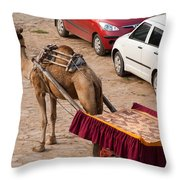 Camel Ready To Take Tourists For A Desert Safari Throw Pillow