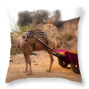 Camel Yoked To A Decorated Cart Meant For Carrying Passengers In India Throw Pillow