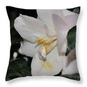 Camellia 18 Throw Pillow