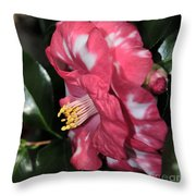 Camellia 3 Throw Pillow
