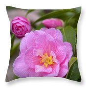 Camellia Camellia X Williamsii Donation Throw Pillow