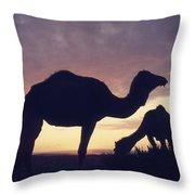 Camels At Dusk Throw Pillow