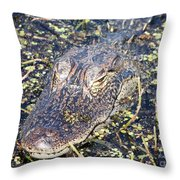Camouflaged Gator Throw Pillow by Carol Groenen
