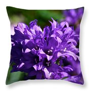 Campanula Glomerata Throw Pillow