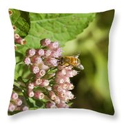 Camphorweed Wildflowers And Honey Bee Throw Pillow