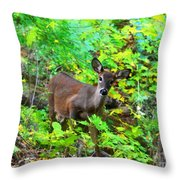 Can I Help You My Deer Throw Pillow