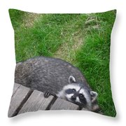 Can You See Me Now Throw Pillow