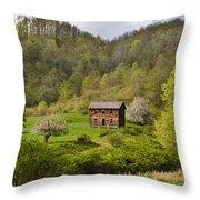 Canaan Valley West Virginia Cabin Throw Pillow