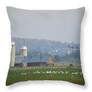 Canada Geese And Other Birds Fill Throw Pillow