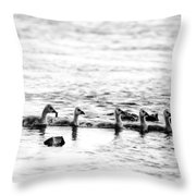 Canada Geese Family II Bw Throw Pillow