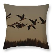 Canada Geese Fly In A Group Throw Pillow